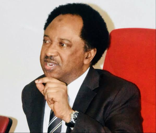 Politicians Cause High Poverty In The North – Shehu Sani 2