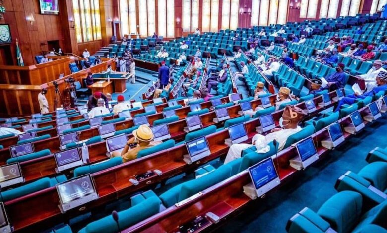 Lawmakers Deliberate On Calls For Pantami'S Removal 1